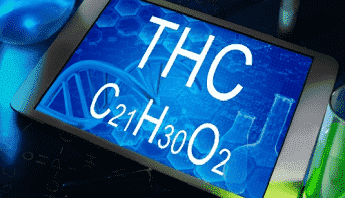 Tablet screen with text THC and its chemical formula: C21H30O2
