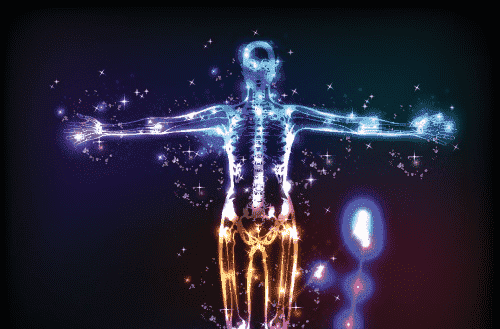 A lit up skeleton to portray the endocannabinoid system