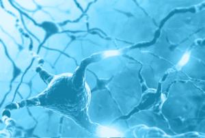 Blue brain neurons firing