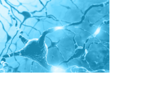 Blue brain neurons